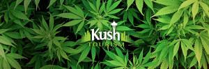 Kush Tourism Camouflage
