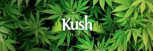 Kush Tourism Farm