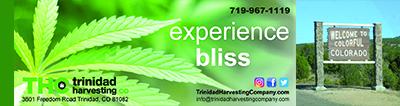THC_retail_recreational_cannabis
