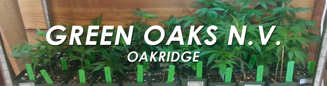Green_oaks_oakridge_oregon_cannabis