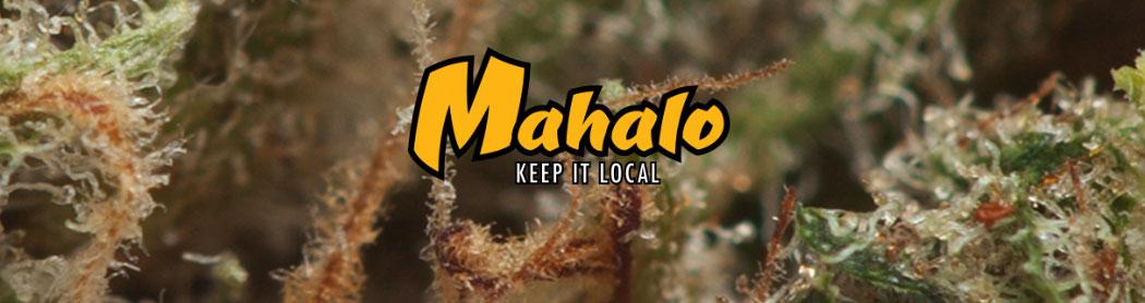 Mahalo_hillsboro_cannabis_oregon