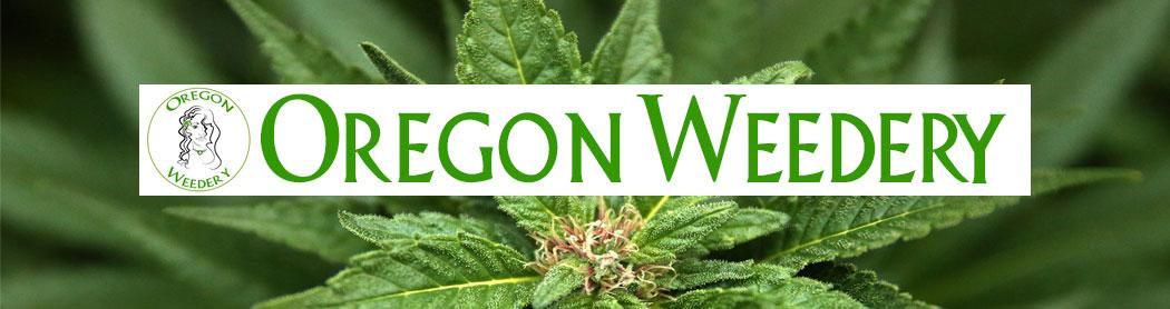oregon_weedery_portland_cannabis_store
