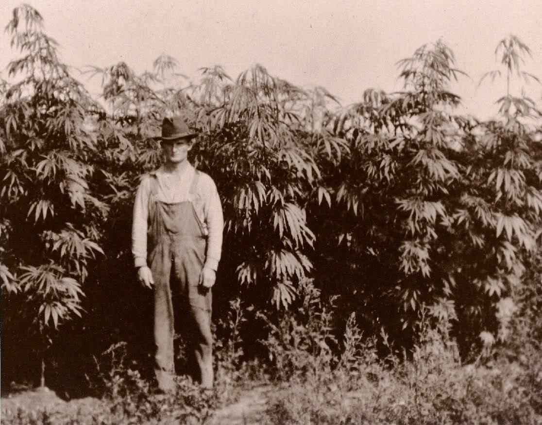 10 Classic Photos Depicting Marijuana's Place In History