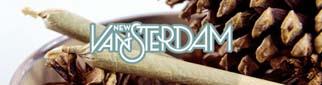 New-Vansterdam
