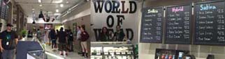world of weed