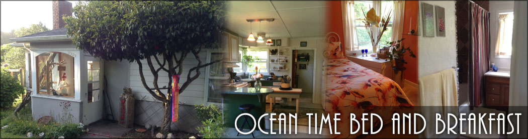 ocean_time_cannabis_bed_and_breakfast_oregon