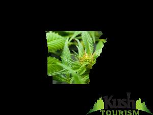 Arkansas Kush Tourism