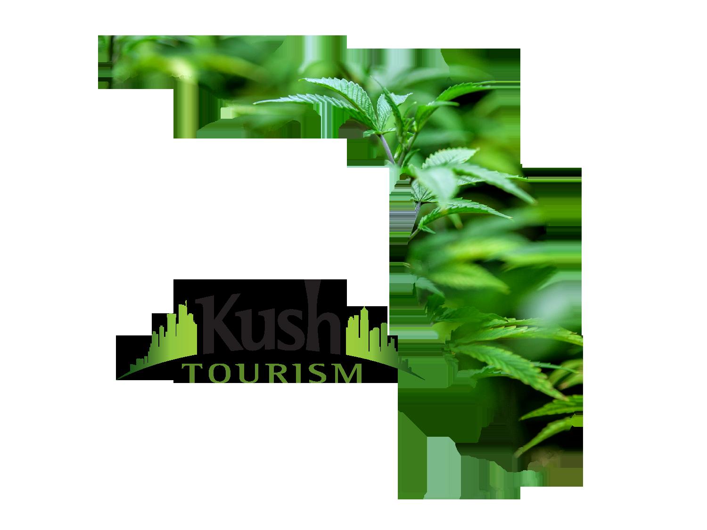 Cannabis Career Institute in Jacksonville, Florida
