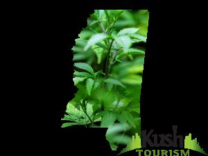 Mississippi Kush Tourism