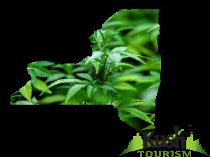 New York Kush Tourism