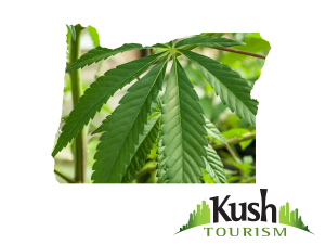 Oregon Kush Tourism