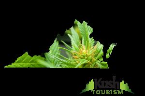 Virginia Kush Tourism