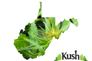 West Virginia Kush Tourism