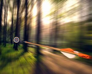 Arrow Shooting Through Forest bxp38509h