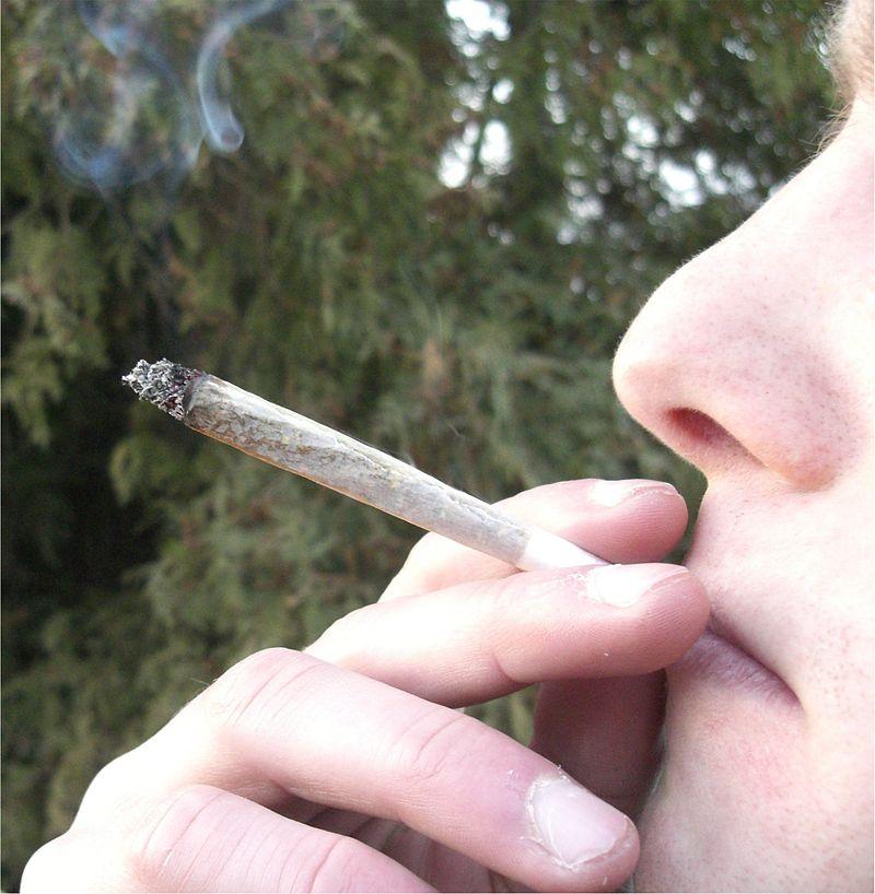 The Get down: Nashville Decriminalizes Cannabis.