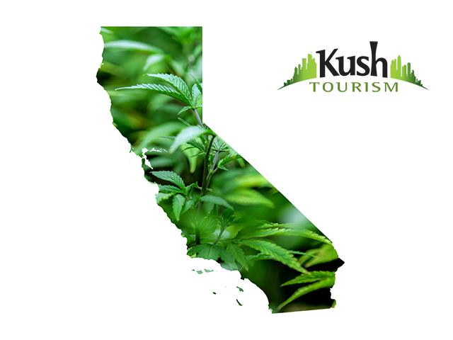 California Kush Tourism