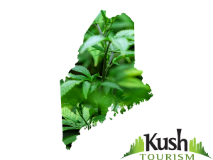 """The Maine Marijuana Legalization Initiative will be on the November 8th ballot, please vote """"YES"""" to legalize cannabis recreationally!"""