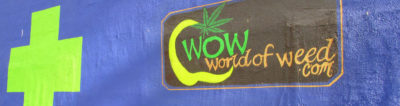 WoW World of Weed Seattle