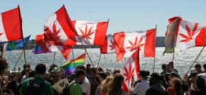 List of Licensed Canadian Medical Marijuana Producers