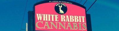 White Rabbit Retail